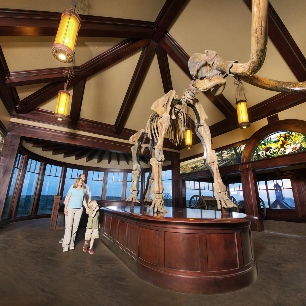tor-mammoth-room-and-family-w-murals-newfloor-new