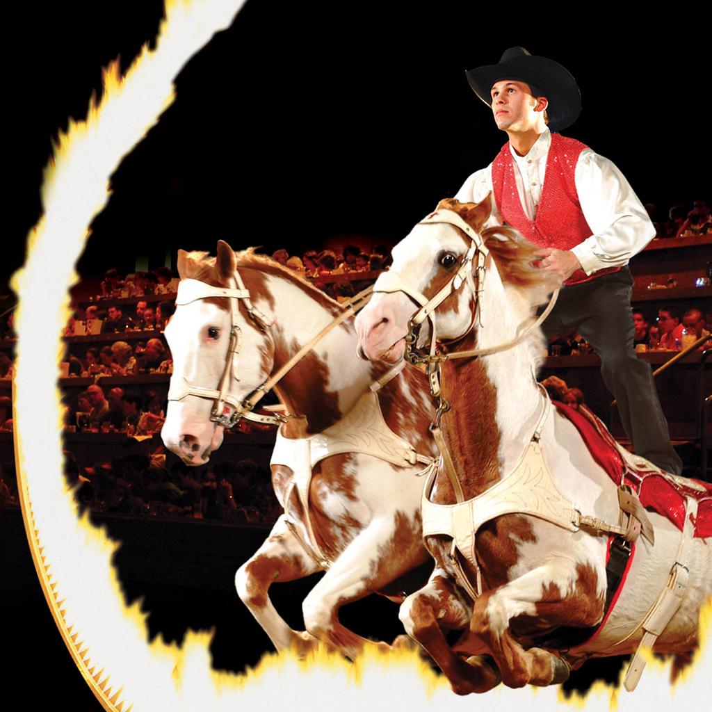 roman-rider_rt